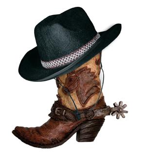 Bottes de cowboy